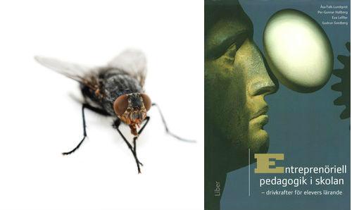 """Boksomslag med staty i profil och titeln """"Entreprenöriell pedagogik i skolan"""" och en fluga."""