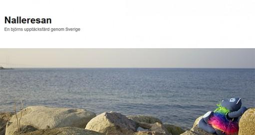 Nalle sitter på sten vid havet.