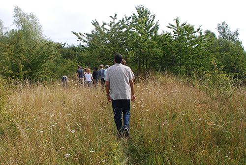 Grupp av människor vandrar i skog och äng.