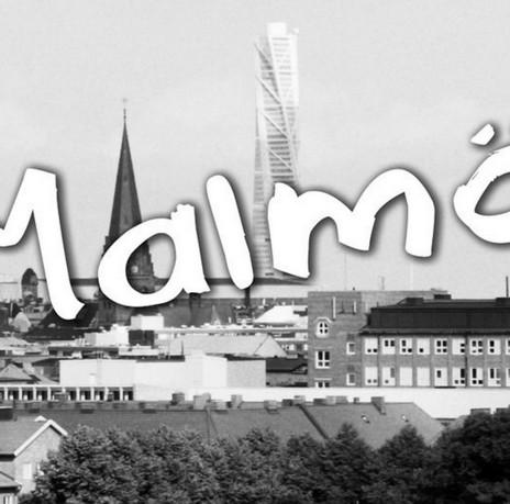 Vy över Malmö med Turning torso i bakgrunden.