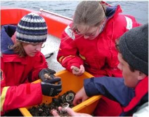 Elever ombord på Naturbåten.