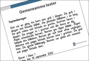 Skärmavbild av text på dator.
