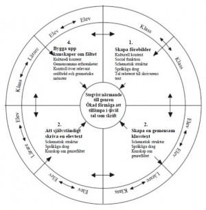 En cirkel uppdelat i olika steg.