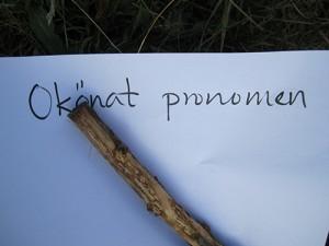 Papper med texten: okönat pronomen.