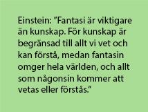 Citat från Einstein.