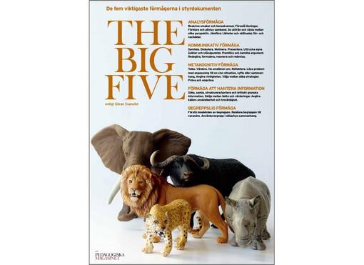 Elefant, lejon, gepard, noshörning och buffel plastdjur. på framsida av broschyr.