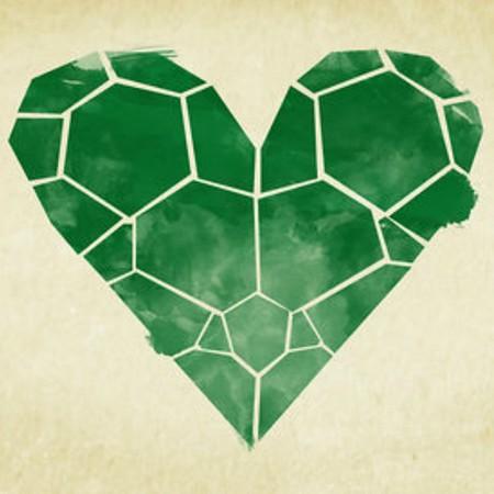 Grönt hjärta formad som sköldpaddsskal.
