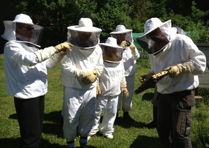 Fem personer i skyddskläder mot bin tittar på bin.