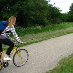 Kvinna cyklar på gul cykel på grusväg.