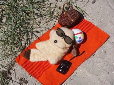 Gosedjur ligger på stranden.