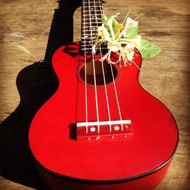 Röd ukulele