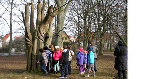 Samling barn vid träd.
