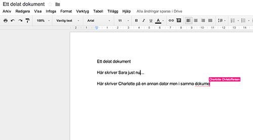 Skärmavbild av hur ett delat dokument i google ser ut.