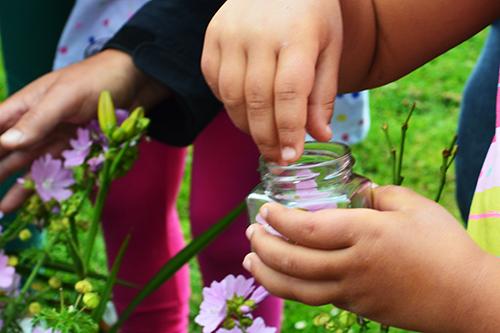 Barnhänder stoppar ner blomma i glasburk.
