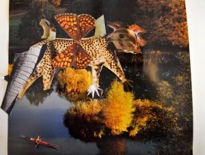 Bild på djur och naturmotiv.
