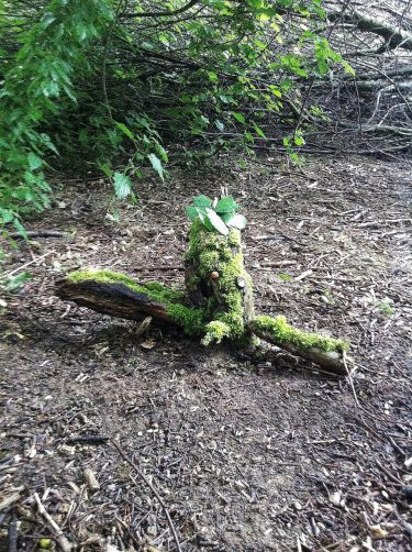 Troll formad av naturmaterial.