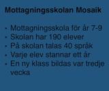Fakta om Mosaikskolan.
