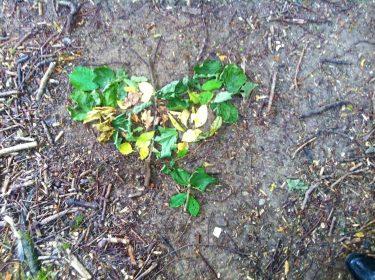Fjäril formad av löv.