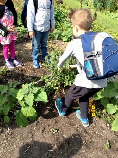 Barn planterar i jord.