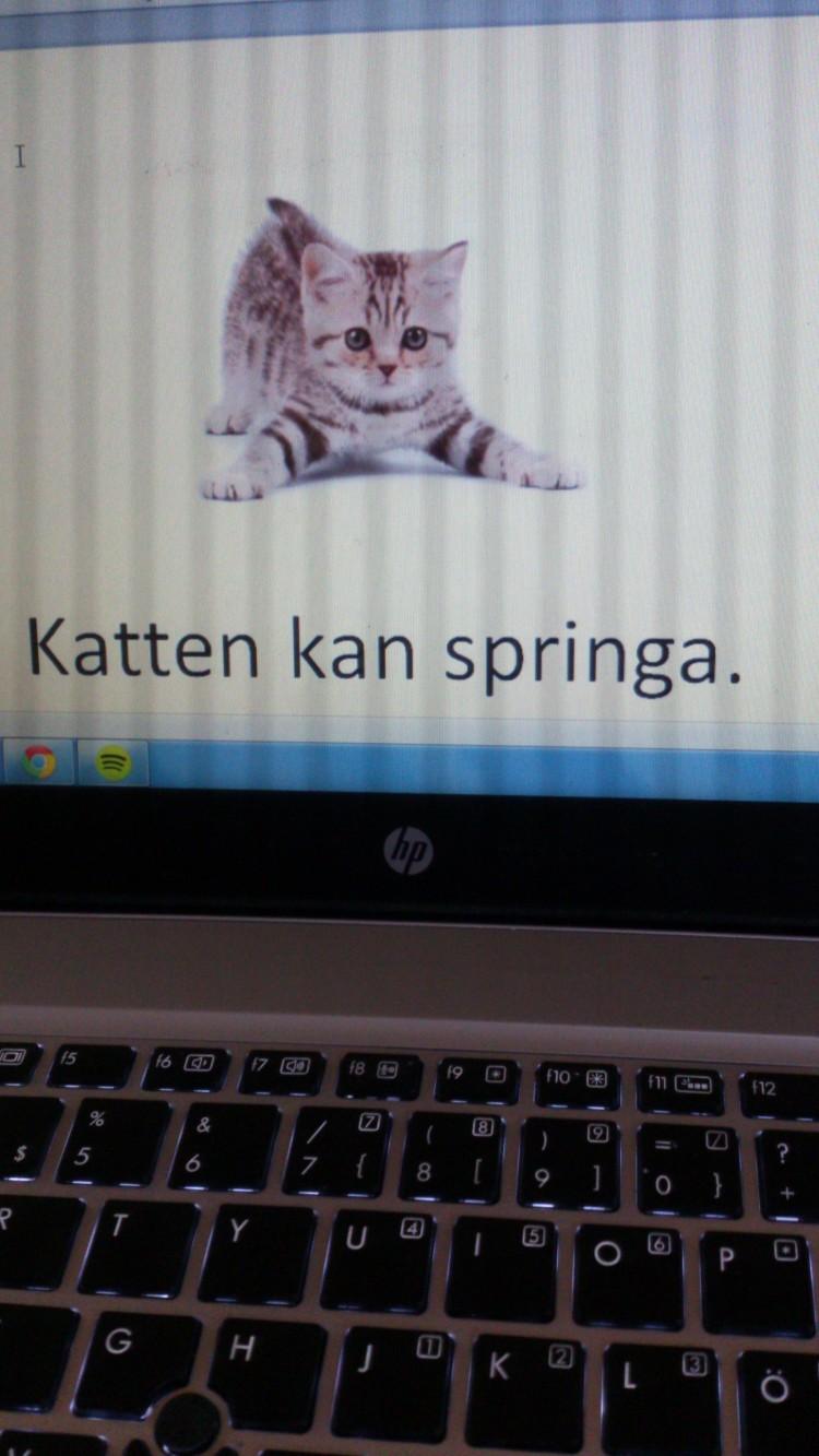 Text på datorns skärm.