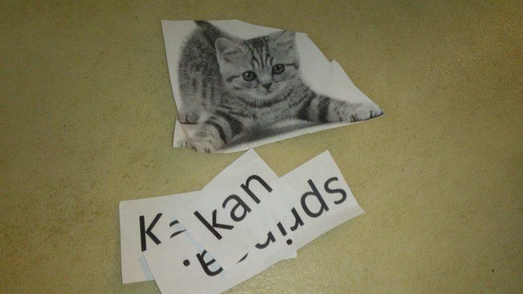 Utklippt bild på katt och ord om katt.