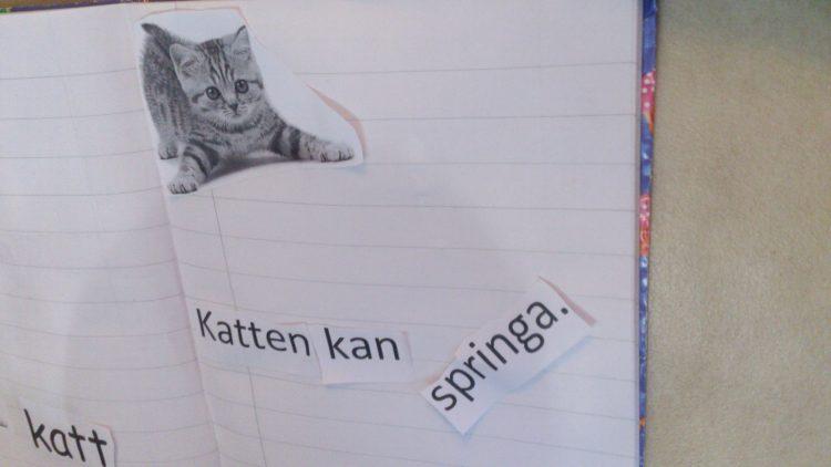 En katt och text om katten i häfte.
