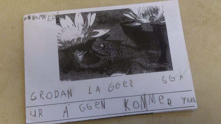 Bild och text om groda.