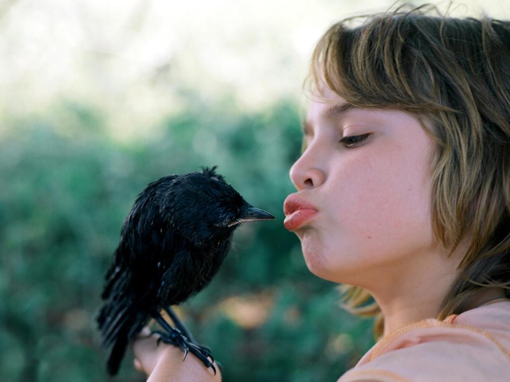 Barn pussar på kråka som sitter på hens hand.