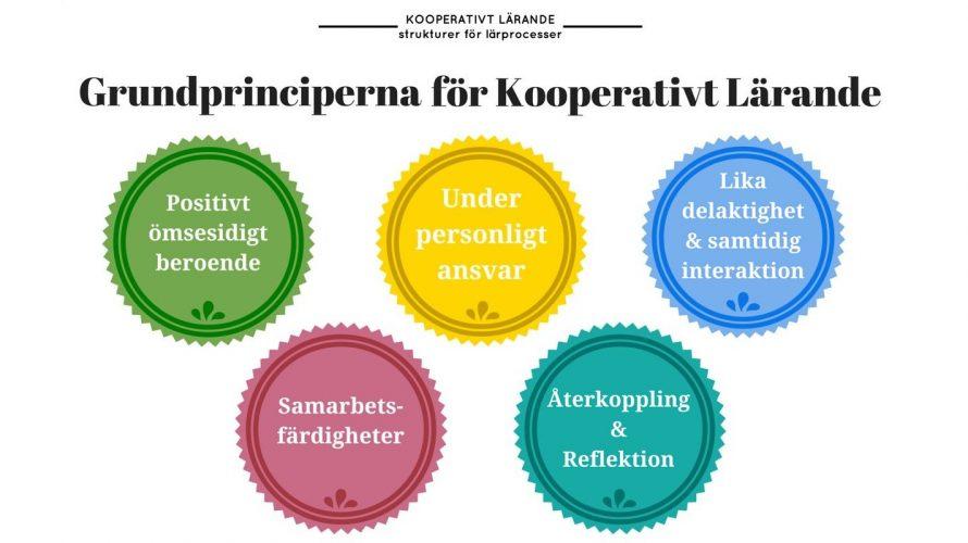 Grundprinciper för kooperativt lärande.