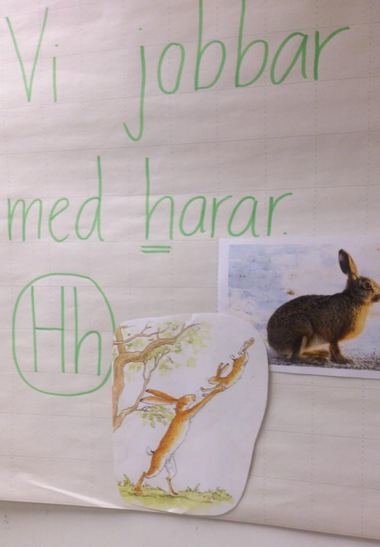Vi jobbar med harar står det bredvid en bild av en hare.