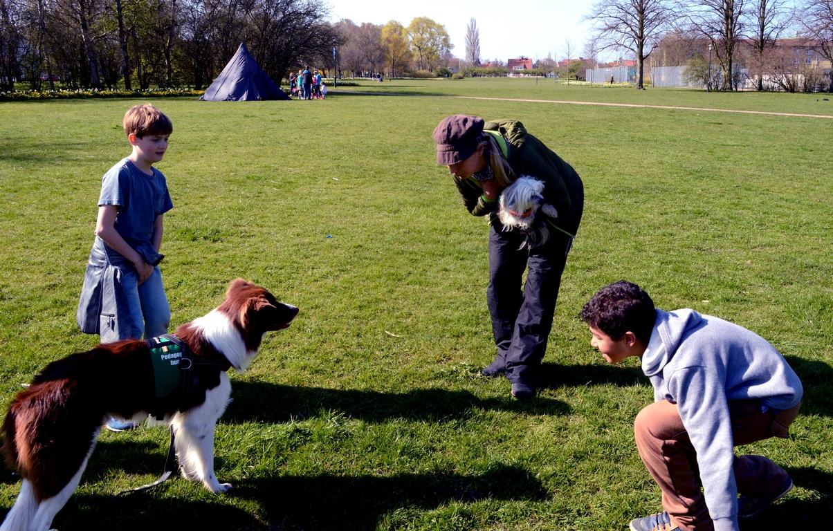 Elever myser med hundarna utomhus.