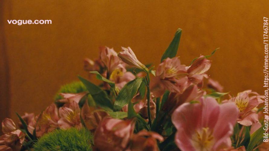 Rosa blommor.