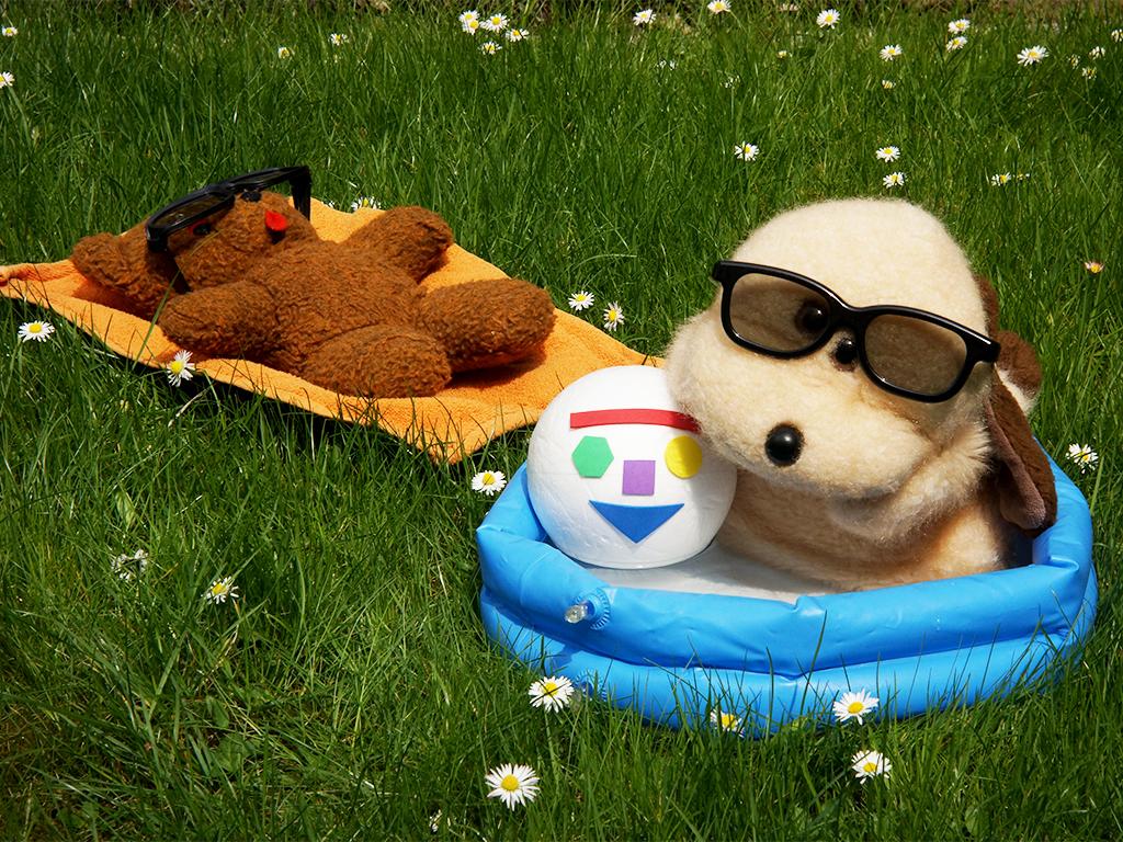 Mjukisdjur badar och solar.