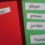Rött och grönt kort med olika påståenden på lappar.