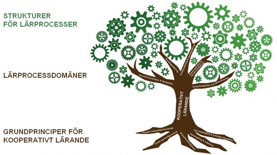 Struktur för kooperativt lärande.