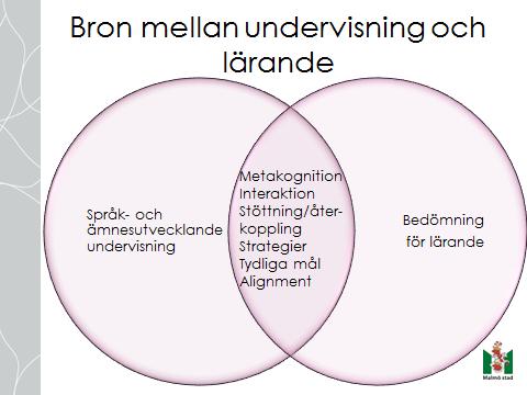 Bild ur presentation.
