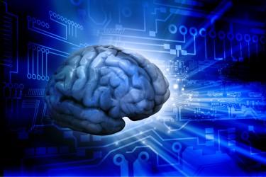 Hjärna på digital bakgrund.