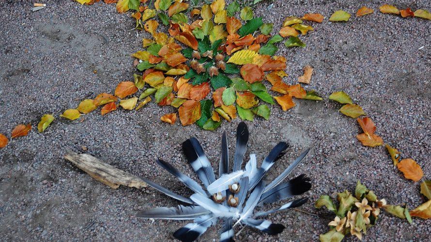 Löv och fjädrar bildar mönster på marken.