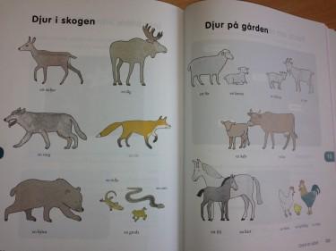 Bilder på olika djur i skogen och på gården.