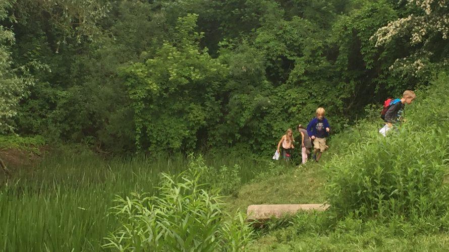 Barn går i skogen.