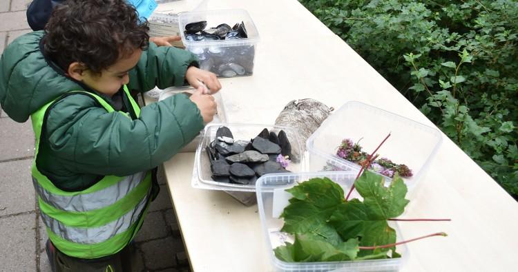 Barn tittar på installation av kottar och löv.
