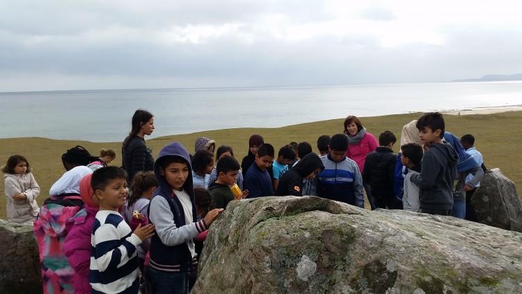 Klass och pedagoger samlade vid stor sten vid havet.