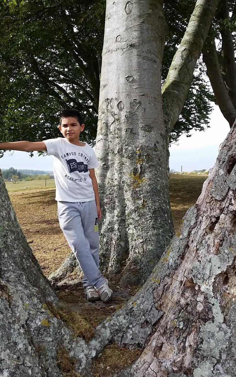 Barn lutar sig mot träd.