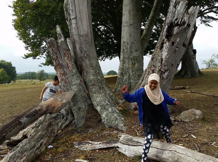Flicka och pojke leker vid träd som fallit omkull.