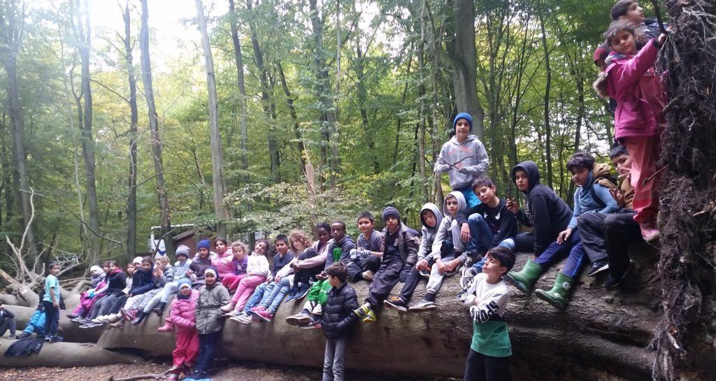 Barn sitter på jättestort fallet träd.