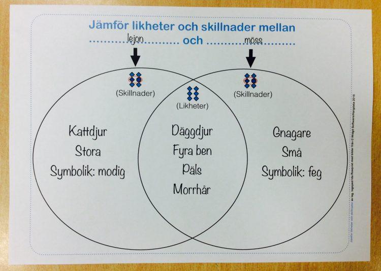 Tabell med likheter och skillnader.