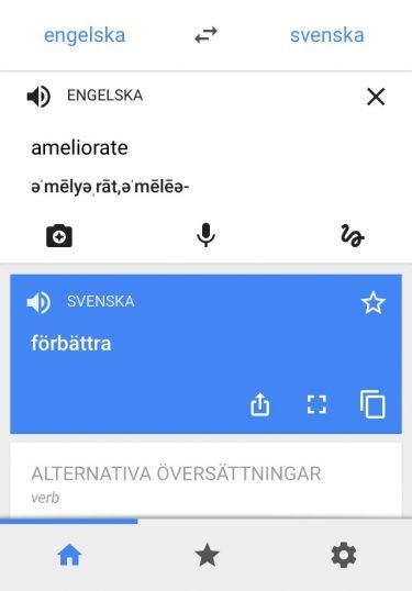 Skärmbild av google translate.