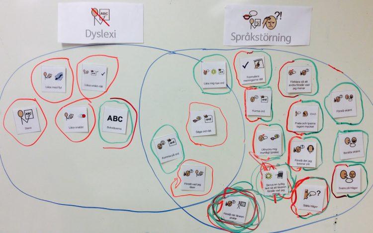 Cirklar med dyslexi och språkstörning i varsin.