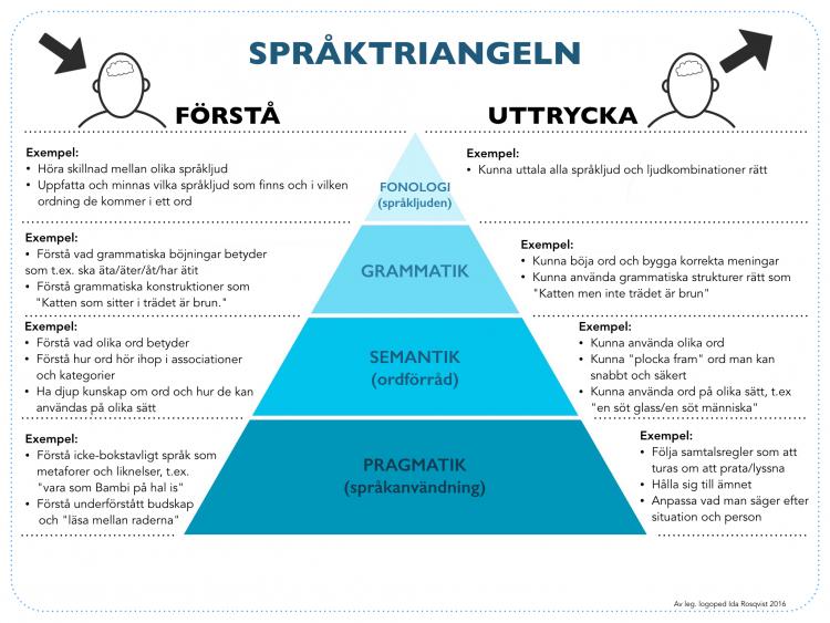 Triangel som visar skillnad mellan förstå och uttrycka med rubriken Språktriangeln.