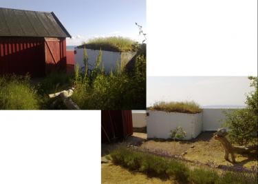 Trädgårdsvy.